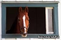 Коня на скоку остановит…