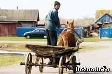 В Витебской области зарегистрируют весь гужевой транспорт