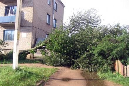 Дождь и сильный ветер в Лиозно