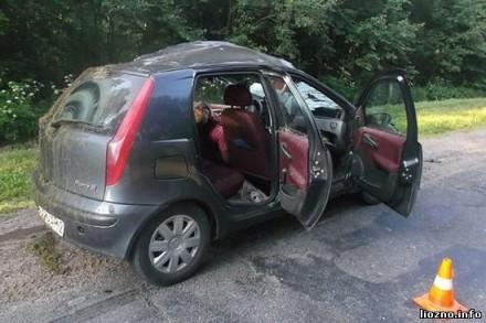 Легковушка столкнулась с лосем, водитель погиб