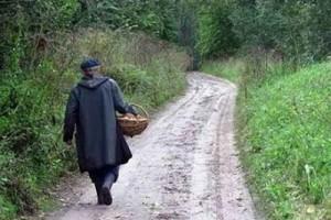 В Лиозненском районе в лесу заблудился пенсионер