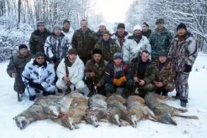Лиозненские охотники за два дня добыли 8 волков