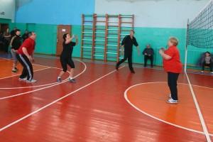 Соревнования по волейболу в Добромыслях
