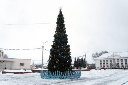 Установлена главная ёлка Лиозненского района