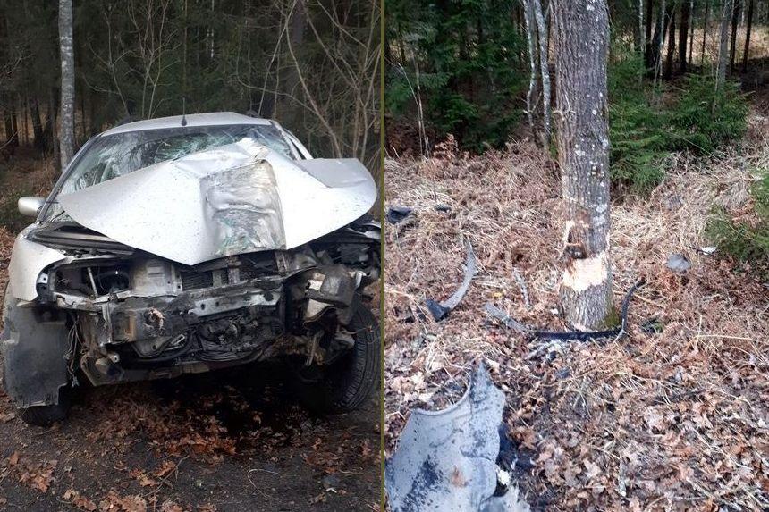 Ford Mondeo под Лиозно пытался объехать косулю