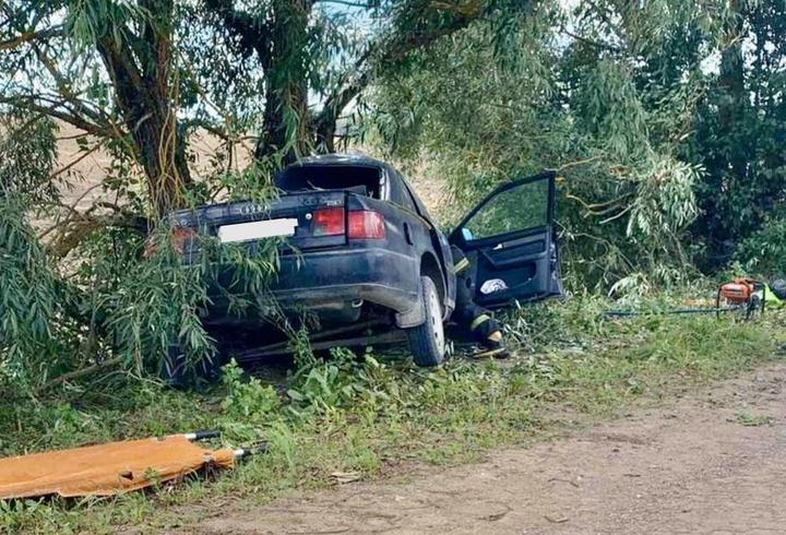 Под Лиозно Audi врезалась в дерево