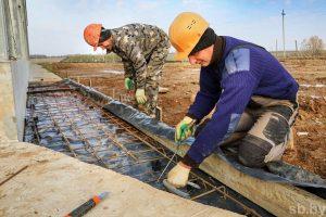 Строительство свинокомплекса вблизи агрогородка Пушки Лиозненского районам