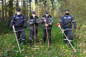 Добровольная акция «Чистый лес»